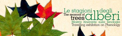 la stagione degli alberi